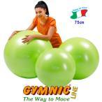 ギムニクボールPLUS75 (グリーン) 直径75cm 身長175cm以上 ギムニク バランスボール