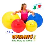 ギムニクボール55 (レッド) 直径55cm 身長145cm〜159cm ギムニク バランスボール