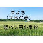 大地の春 春よ恋 25kg 北海道産小麦として高い評価を受けている「大地の春 春よ恋」を100%使用した強力小麦粉です。