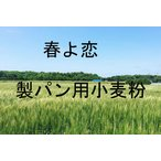 春よ恋 2.5kg×2個 5kg 北海道産小麦として高い評価を受けている「春よ恋」を100%使用した強力小麦粉です。