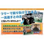 バドミントン上達革命DVD 埼玉栄男子バドミントン部コーチ、山田秀樹監修