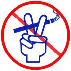 禁煙達成プログラムキット 禁煙宣言(すぐ禁煙 グッズ パイポ パイプ 方法 禁断症状 効果)