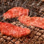 亀山社中 焼肉 バーベキュー セット 1 はさみ・説明書付き(牛肉 ハラミ モモ カルビ 牛タン フランクフルト ビール)