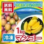 沖縄県産 マンゴー 伊是名島 冷凍マンゴー 1kg カット済