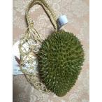 タイ産ドリアン 約1.6kg〜1.8kg Mサイズ 1玉(プーマニー種)