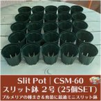 【プルメリアの種まきに最適】小さなスリット鉢(2号サイズ)25個セット