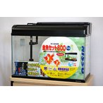 ニッソー 60cmガラス水槽 観賞魚飼育5点セット 60Hz(西日本)仕様 【熱帯魚・アクアリウム/水槽・アクアリウム/水槽セット】