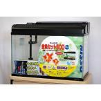 ニッソー 60cmガラス水槽 観賞魚飼育5点セット 50Hz(東日本)仕様 熱帯魚・アクアリウム/水槽・アクアリウム/水槽セット