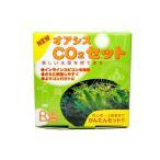 リキジャパン NEWオアシスCO2セット CO2添加フルセット