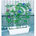 第一ビニール のびーる支柱 花のアーケード プランター用