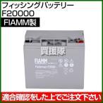 FIAMM フィッシングバッテリー F20000
