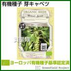 (メール便送料無料)グリーンフィールド 芽キャベツ 小袋  /  有機種子 A091