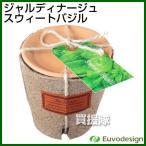 ベランダガーデニングにおすすめ!エコな栽培キット