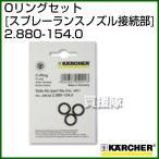 ケルヒャー 高圧洗浄機用 Oリングセット スプレーランスノズル接続部 2.880-154.0