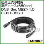 ケルヒャー 超高圧洗浄機/アクセサリー 高圧ホース 650bar DN8、3m、M22×1.5 6.391-856.0