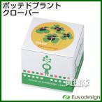 ラッシュ Euvo Design Potted Plant オキザリス(クローバー) PP10190