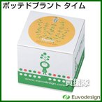 ラッシュ Euvo Design Potted Plant タイム PP10194