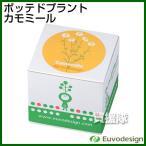 ラッシュ Euvo Design Potted Plant カモミール PP10197