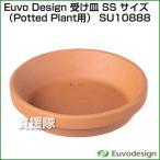 ラッシュ Euvo Design 受け皿 SS サイズ (Potted Plant用) SU10888