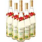 ショッピングハワイ ハワイ土産 パイナップルワイン(レイ付)6本 (ハワイ 土産 お土産) ID:E7050823