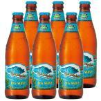 ハワイ お土産 コナビール ビッグウェーブ 6本セット ID:E7051030