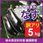 足利産 ナス 5kg セット なす 茄子 栃木県 野菜  産地直送