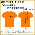 サッカー名言Tシャツ/ヨハン・クライフ/ボールを回せ、ボールは疲れない!/全26色/サイズ130〜5L