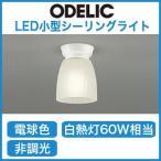 オーデリック 照明器具 LED小型シーリングライト 電球色 白熱灯60W相当 OL013229LD
