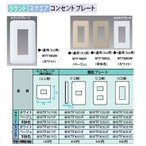 Panasonic 電設資材 コスモシリーズ ワイド21配線器具 コンセントプレート WTF7071G