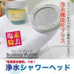 シャワーヘッド 塩素除去  浄水 節水 マイクロバブルシャワーヘッド ボリーナプリート