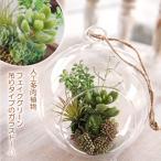 人工観葉植物 多肉植物 フェイクグリーン ガラスドーム 吊りタイプ