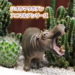 観葉植物 人気 誕生日 プレゼント ジオラマ サボテン  F-1