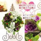 クリスマスも飾れる お正月お飾り 新年 迎春飾り 花リース ニューイヤー葉牡丹の寄せ植えリース ハボタン