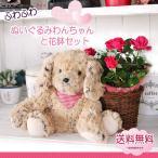 花 ギフト プレゼント 誕生日 送料無料 ぬいぐるみ わんちゃん 鉢花 カゴセット