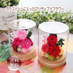 花 ギフト 誕生日 プレゼント  送料無料 木の温もり♪シャーロット ガラスドーム  プリザーブドフラワー