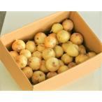 野菜 玉ねぎ タマネギ 佐賀県産 新たまねぎ M〜2L 約10kg 風袋込 同梱不可 送料無料
