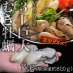 Shellfish - かき カキ 広島県 3Lサイズ 巨大牡蠣 大容量 1キロ 加熱用 かき 冷凍 加熱調理用 冷凍 冷凍同梱可能