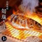 さば サバ 鯖 長崎県産 旬サバ ときさば 旬さば 塩さば 1袋2枚入り 約220g 干物 魚 さかな 冷凍 冷凍同梱可能