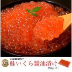 イクラ いくら 魚卵 北海道釧路加工 天然鮭いくら醤油漬 250g×1P 冷凍同梱可能