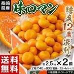 みかん 送料無料 長崎県産みかん 味ロマン 約2.5kg (2S〜M)×2箱 【糖度12度選別】