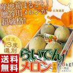 メロン めろん 北海道産 らいでんメロン 赤肉 4〜6玉 約8kg 送料無料