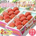 桃 もも 福島県産 伊達の桃 特秀品 約1.5kg×2箱 1箱あたり5〜10玉 送料無料 産地直送の画像