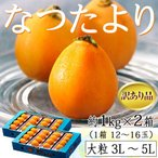 送料無料 長崎県産 なつたより 訳あり品 大粒3〜5L 約1kg×2箱 (1箱: 12〜16玉入)※冷蔵