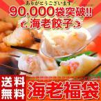 ≪送料無料≫『海老福袋』 海老餃子50個+海老春巻12本