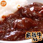 『飛騨牛カレー』約200g×2袋 ※冷凍 【冷凍同梱OK】