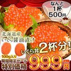 Salmon Roe - 北海道産 いくら醤油漬け 100g ※冷凍 【冷凍同梱OK】☆
