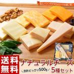 訳あり チーズ 不揃い 送料無料 ナチュラルチーズ5種セット 500g 冷凍同梱不可