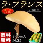 洋なし 洋ナシ 山形県産 ラ・フランス 秀品 約2kg(5〜9玉) 送料無料