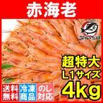 赤海老 赤えび 4kg 超特大 L1 20〜40尾 業務用 2kg×2箱 赤エビ あかえび アカエビ 寿司 刺身用