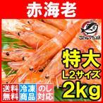 ショッピング赤 赤海老 赤えび 2kg 特大 L2 30〜60尾 業務用 1箱 赤エビ あかえび アカエビ 寿司 刺身用